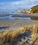 Footprints In The Sand: Wharariki Beach