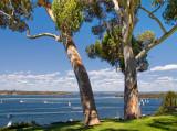 Perth and the Swan River, Mosman WA