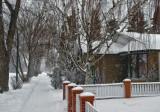 Winter snow - Calgary, Alberta.