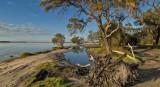 Peel Estuary, Western Australia