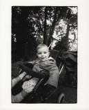 Robin in stroller.jpg