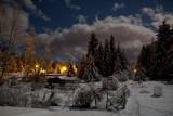 my backyard by moonlight