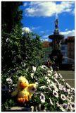 @ Fountain of Sampson