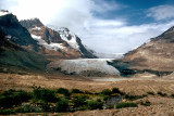 Athabasca Glacier, Columbia Ice Fields