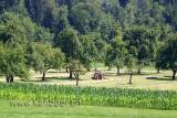 Landwirtschaft (06191)