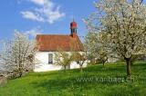 Weinrebenkapelle (93528)