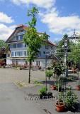 Zollhaus (94801)