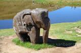 Elefant (106236)