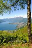 Lago Maggiore (103982)
