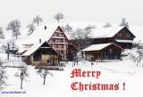 Merry Christmas ! (01448-2)