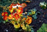 Blumen / Flowers (1998)