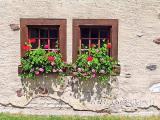 Fenster (05403)