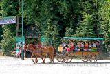 Tiergarten (05671)