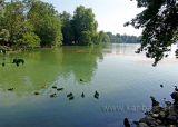 Am See / At the Lake (06234)