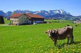Appenzell (2022)