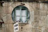 Azeitoneira do Porto