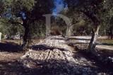 Troço de Via Romana (Imóvel de Interesse Público)