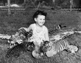 1947 - little Sheila Poland playing with Bengal tiger cubs at a Miami area animal attraction