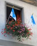 FLAGGED WINDOW