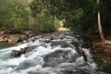 Endau Rompin State Park, Malaysia