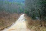 Fannin, Lumpkin, Dawson, Gilmer County Road Trip 02_08_09