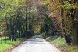 October 2009 - Cohutta WMA and Tumbling Creek Road -