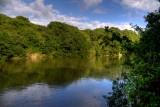 Tretham Creek