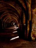 The Cellarium - Fountains Abbey