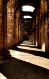 Shadows - Fountains Abbey