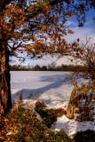 Autumn Meets Winter