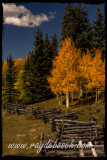Bole Fence at Beaver Lake, Cimarron Valley