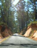 road near highest town in oz copy.jpg
