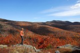 Mount Shaw - the highest point of the Ossipee Mountains