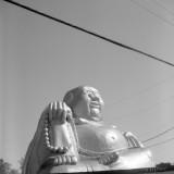 bar buddha