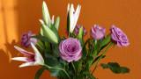 v_day_flowers