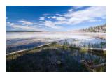 Snags in Marsh Around Grand Prismatic Spring.jpg