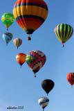 The Albuquerque International Balloon Fiesta 2010
