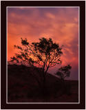 West Texas Landscapes - Scenes Gallery