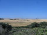 summer landscape of Gippsland