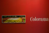 Colorama at the George Eastman House