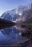 Reflection of Edith Cavell Mountain in Cavell Lake