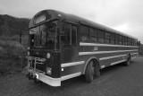 Bus at Savage River