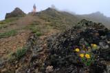 Randevous Peak