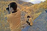 Roadside hunting.