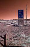Roadside, Nevada.