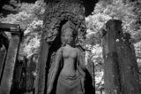 A beautiful Apsara at the Bayon.