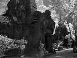 Ta Phrom temple...