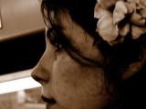 Seppia close-up