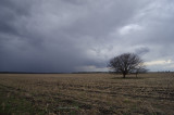 Storm_4038.jpg