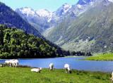 011 Lac d'Estaing
